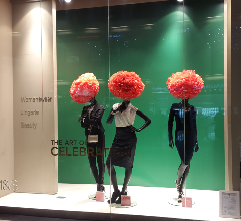 window display6